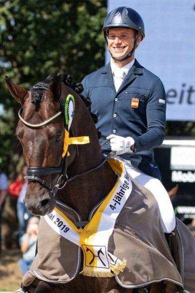 Frizzantino wurde Hannoveraner Champion der vierjährigen Hengste. (Foto: Hannoveraner Verband)