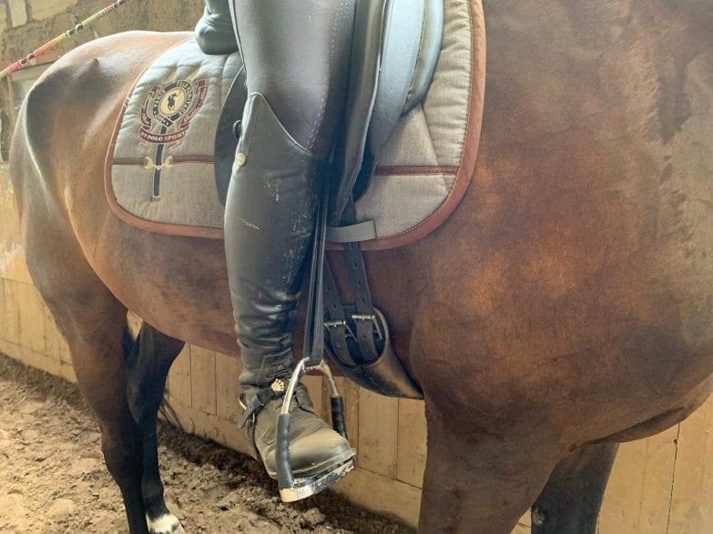 Foto: horseweb
