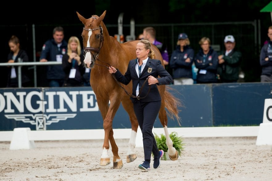 Werth Isabell, GER, Bella Rose Rotterdam - Europameisterschaft Dressur, Springen und Para-Dressur 2019 Horse Inspection for Dressage horses Vet-Check für Dressurpferde 18. August 2019 © www.sportfotos-lafrentz.de/Sharon Vandeput