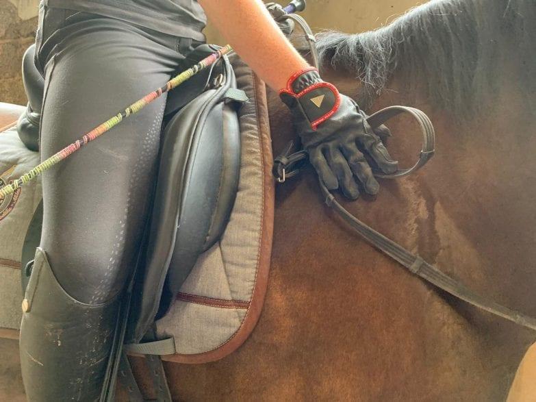 Foto:horseweb