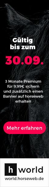 banner world horseweb business