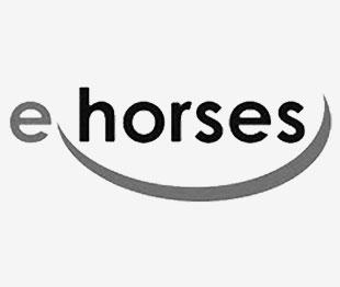 e-horses-partner