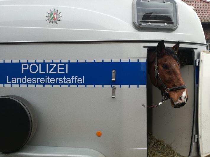 Foto: Polizeipräsidium Bochum