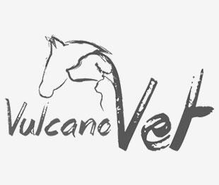 vulcano-vet-partner