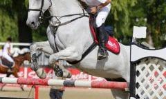 Linzer Pferdefestival/ Miguel Daxner (Foto by Team Myrtill)