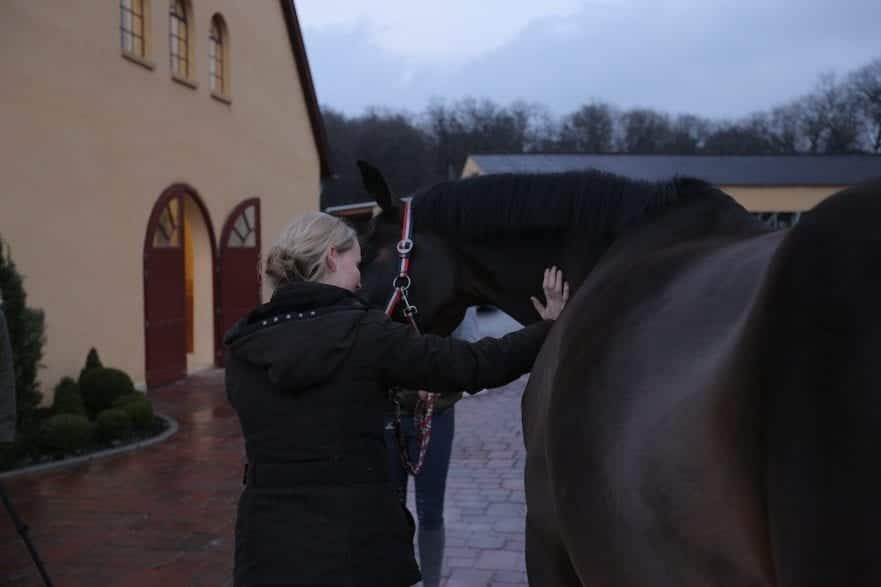 Hünelmann, Sabrina; Pohlmann, Dirk,  Horse Competence Center © www.sportfotos-lafrentz.de/Stefan Lafrentz