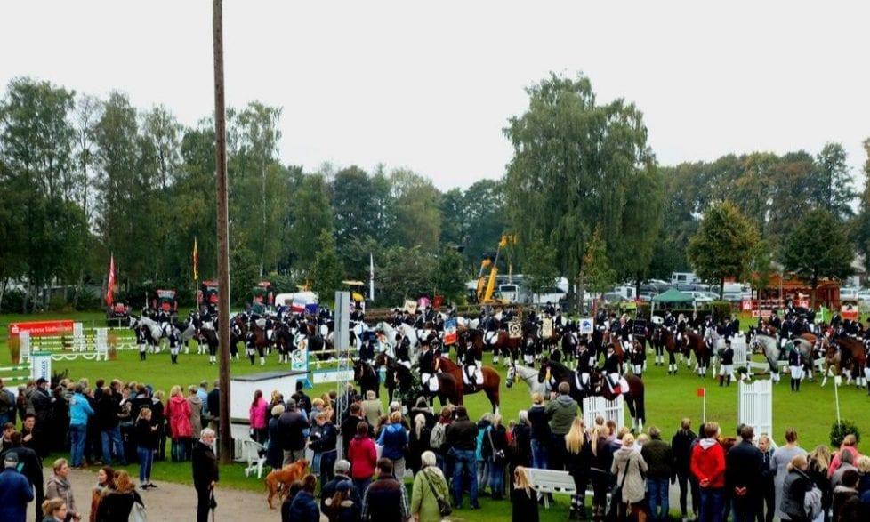 Mehr als 1200 Pferde und über 700 Reiterinnen und Reiter - ein großer Teil davon in den Landeswettkämpfen der Reitabteilungen - werden beim 71. Landesturnier in Bad Segeberg erwartet. (Foto: Tierfotografie Huber)