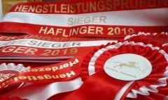 Leistungsprüfungen 2020 im Pferdezentrum Stadl-Paura