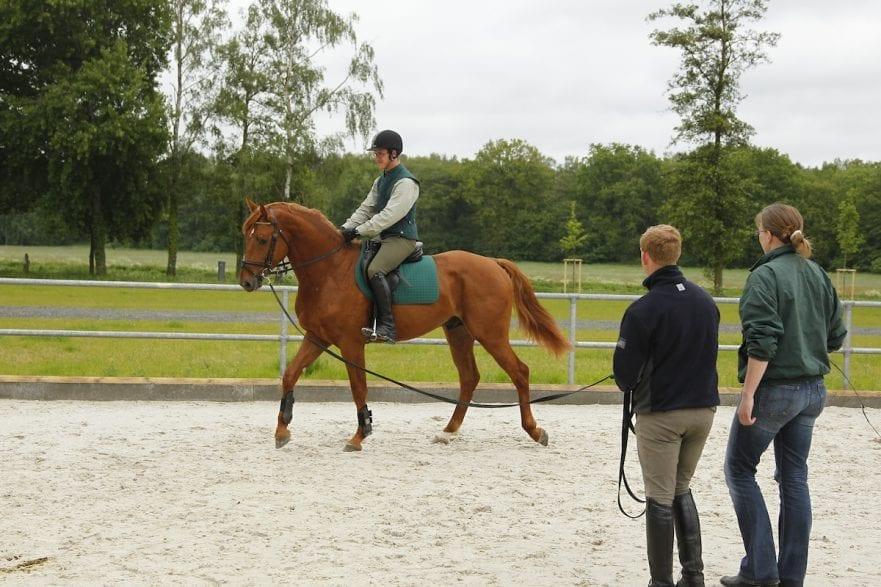 Anreiten Redefin - erstes Anreiten von jungen Pferden 2010 Reiter an der Longe www.sportfotos-lafrentz.de/Stefan Lafrentz
