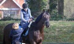 Tageskurs mit Imke Schlömer - mit und ohne Pferd möglich                                  Foto: RI