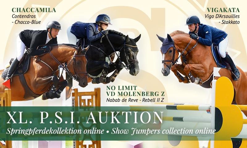 XL. P.S.I. Auktion Springkollektion online!