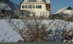 Bexter Hof Winter Training