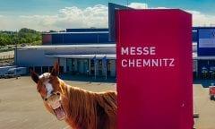 Messetour-Special zum Großen Preis von Sachsen
