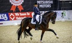 Tadellose Runde und sicherer Sieg für Dorothee Schneider und Mister-C beim AGRAVIS-Cup in Oldenburg in der Intermediaire II. (Foto: Stefan Lafrentz)