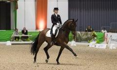 Annabel Frenzen sichert sich bei der Faszination Pferd mit Kiefferhof´s Imperius das Finalticket(Foto: Thomas Hellmann)
