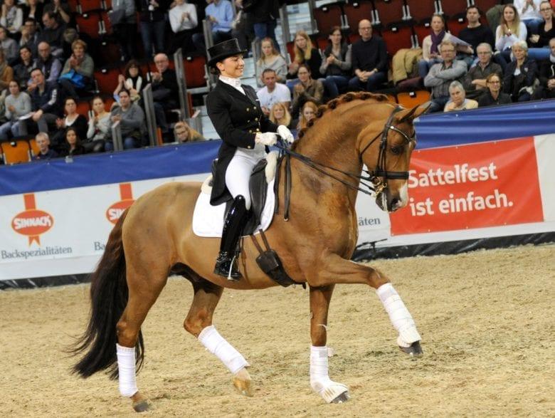 Burlington FRH von Breitling - hier mit Charlott-Maria Schürmann - wird über die Böckmann Pferde GmbH 2020 zum Zuchteinsatz kommen. (Foto: Thomas Lehmann)