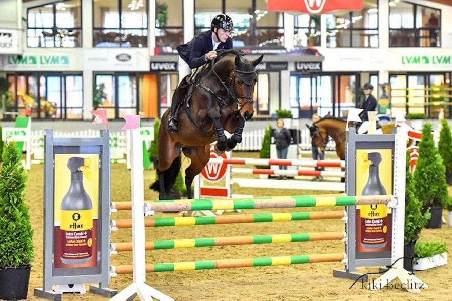 Can Tici von Cornet Obolensky aus dem Hengstbestand der Böckmann Pferde GmbH hat seinen Sporttest als