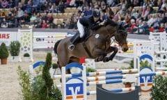 Die 19 Jahre junge Natalia Stecher zählt zu den größten Talenten des schleswig-Holsteinischen Springsports mit ihrem Fürst Rainer. (Foto: Stefan Lafrentz)