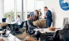 Axel Milkau (links im Vordergrund) und Knud Maywald (rechts), der CLASSICO und die Öffentliche, durch die Pferde verbunden – in diesem Fall durch Pferd Mentor. Foto: Sebastian Dorbrietz / MOODMOOD