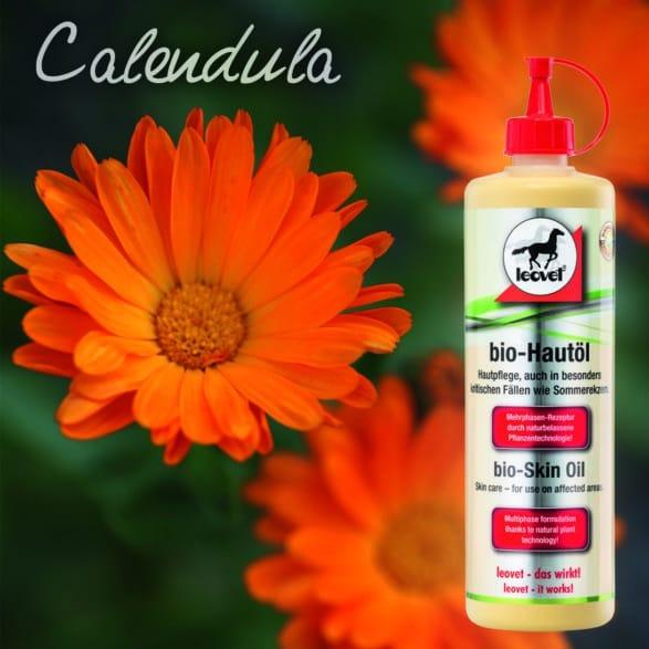 NEU: Die Pflanzenfibel von leovet – Calendula im Bio-Hautöl  Effektive Hilfe bei Sommerekzem