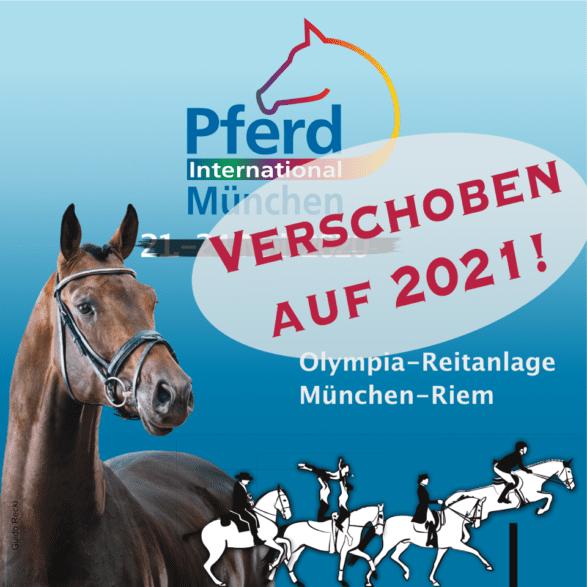 Absage Pferd International