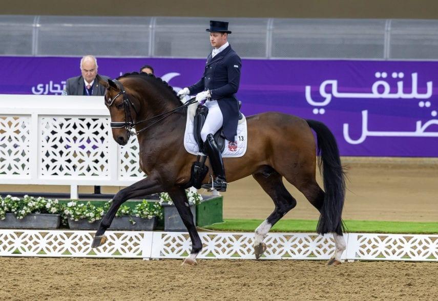 Foundation war aktuell mit Matthias Alexander Rath in Doha/QAT auf Grand Prix-Niveau erfolgreich (Foto: Hannoveraner Verband/Stefan Lafrentz)