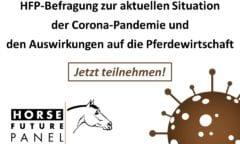 HFP-Befragung zur aktuellen Situation der Corona-Pandemie und den Auswirkungen auf die Pferdewirtschaft