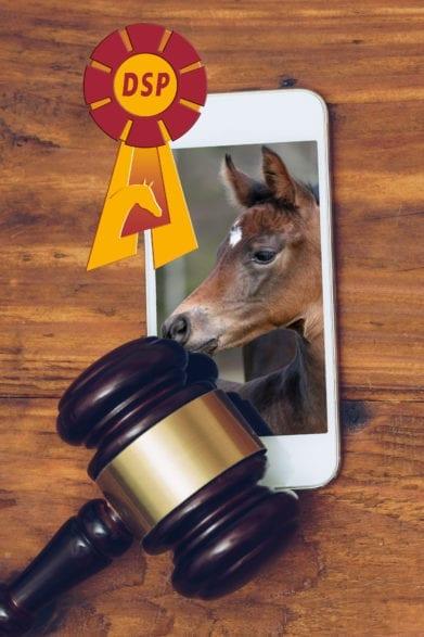 Judge gavel over smartphone, top view