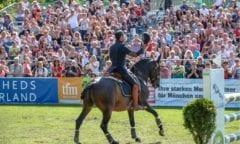 Pferd International lockt nur virtuell (Foto: Petra Hapke)