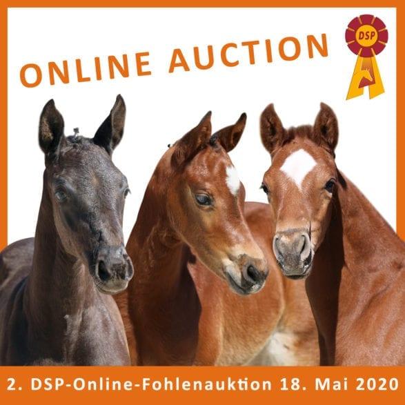DSP Online-Auktion