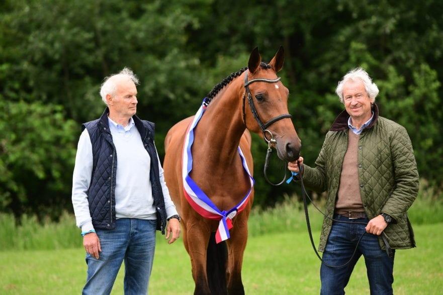 Die Holsteiner Siegerstute springbetont: Karolin mit ihrem Besitzer Hans-Ulrich Wichmann (li.) und dessen Bruder.