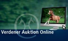 Verdener Auktion Online