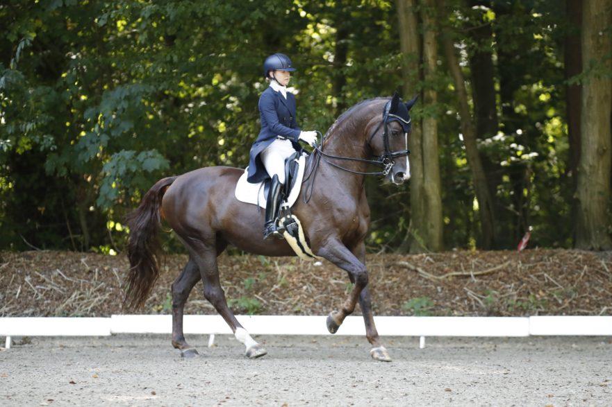 Franziska Haase und Belaabs erobert auf Anhieb Platz eins in der Junge Reiter/ U25-Konkurrenz bei den Landesmeisterschaften in Bad Segeberg. (Foto: Tierfotografie Huber)