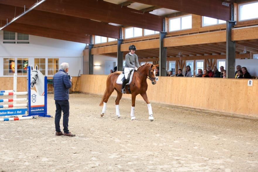 Zucht, Sport, Ausbildung - unter diesem Motto diskutierte und präsentierte der langjährige Leiter der FN-Abteilung Ausbildung, Christoph Hess, in der Hengststation Maas J. Hell im Rahmen eines PM-Seminars. (Foto: Aenne Müller)