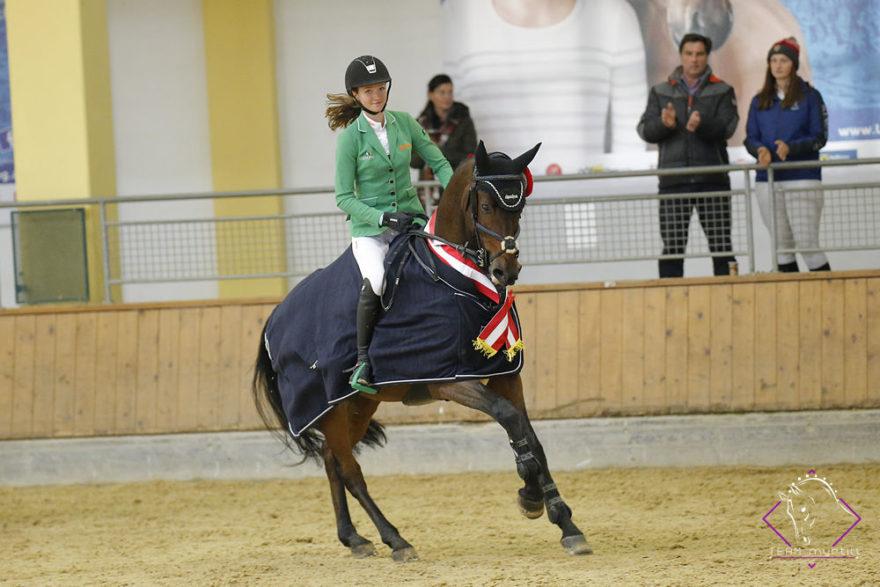 Bundeschampion sechsjährige Springpferde: Staletto ZGE v. Stakkato Gold   (Z.: ZG Eisenberger, Oberdrosen, B | B. & R.: Marie Christine Sebesta, W)