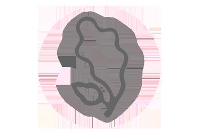 Logo Hannoveraner Ponys