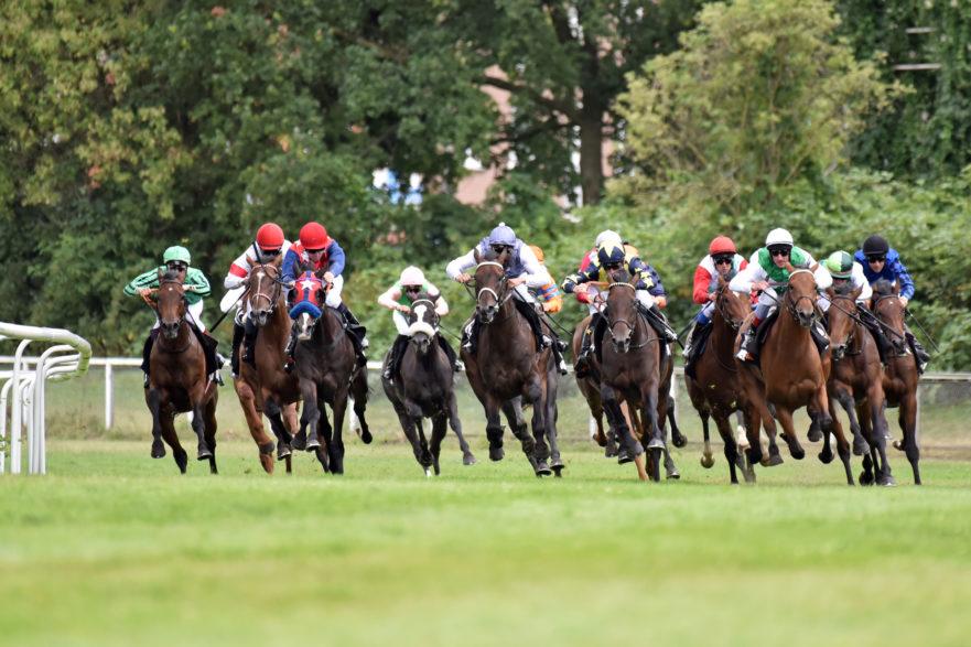 Der Run auf das 152. Deutsche Derby in Hamburg-Horn läuft, insgesamt 110 Pferde sind aktuell angemeldet. (Foto:galoppfoto.de/Sorge)
