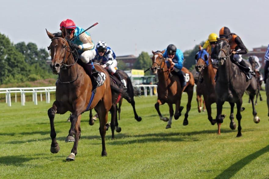 Am 4. Juli wird in Hamburg-Horn das 152. Deutsche Derby gelaufen - dafür stehen 94 Pferde aktuell in der Liste. (Foto: galoppfoto/ Frank Sorge)