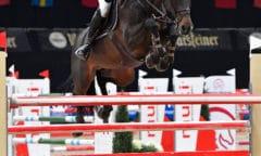Österreichs Max Kühner hat seine Pferde im Rahmen des CSI2* Salzburg Indoor Jumping vergangenes Wochenende(13.-17.01.2021) bereits an die Salzburgarena gewöhnt und wurde auf EIC Caleo mit einer Doppelnullrunde hervorragender Vierter im CSI2* Grand Prix. © Sibil Slejko