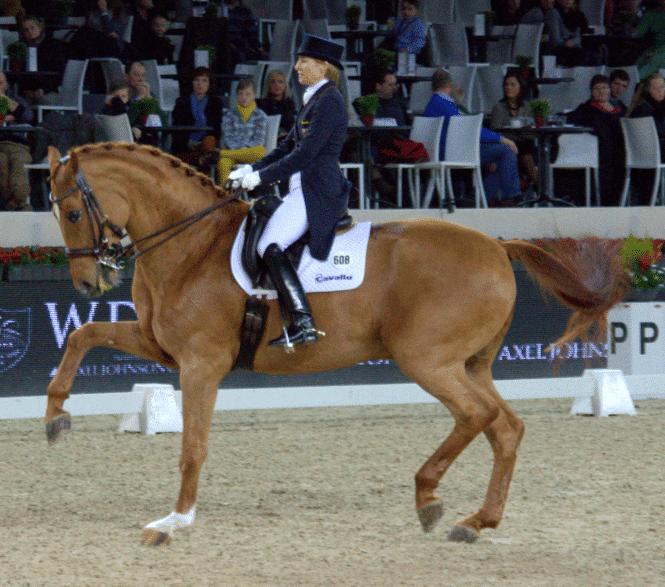 Nadine Capellmann mit Elvis VA, CDI 5* Mechelen 2012