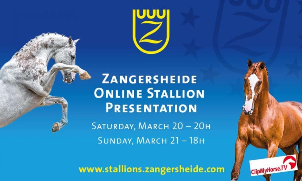Plakat Zangersheide Hengstpräsentation