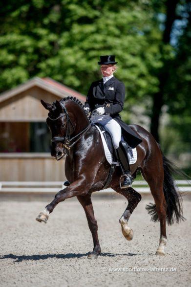 Nicole Wego-Engelmeyer mit San Ravallo beim Pferdefestival Redefin.Foto: Stefan Lafrentz