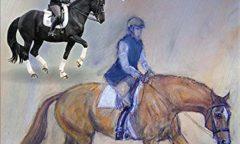 Pferdeausbildung. Eine lebenslange Gymnastikschule