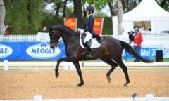 Helen Langehanenberg siegte mit Straight Horse Ascenzione auch in der Finalqualifikation zum NÜRNBERGER BURG-POKAL. Foto: Hubert Fischer