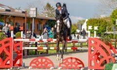 Mit fast zwei Sekunden Vorsprung zum Sieg im Großen Preis von Ehlersdorf: Jan Meves und Dynastie D. (Foto: Fotografie C.B/Ch. Beeck)