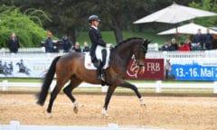Jessica von Bredow-Werndl siegte mit Ferdinand BB im CDI3*. Foto: Hubert Fischer