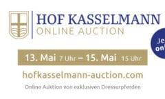 Logo Hof Kasselmann Online Auction