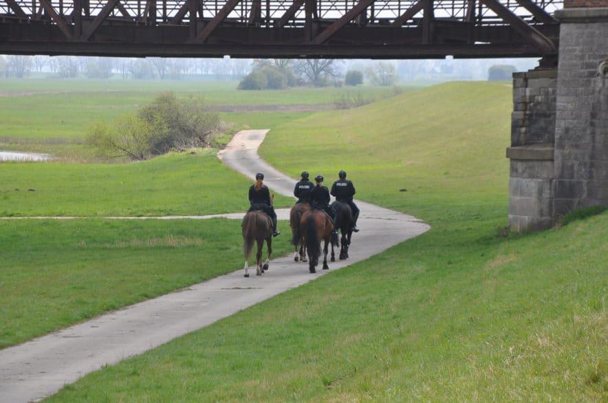 Foto: anwesende PolizeireiterInnen: Anne Schloßer mit Pferd