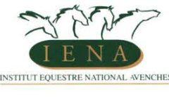 Logo IENA