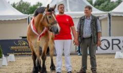 Siegerstute Kaltblut mit Thomas und Matthias Müller Bildnachweis: Reckimedia.